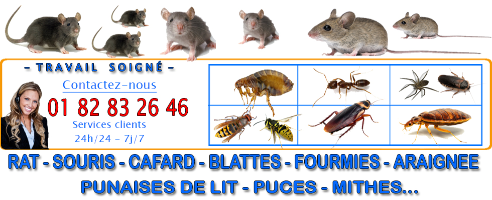 Deratisation Villers sous Saint Leu 60340